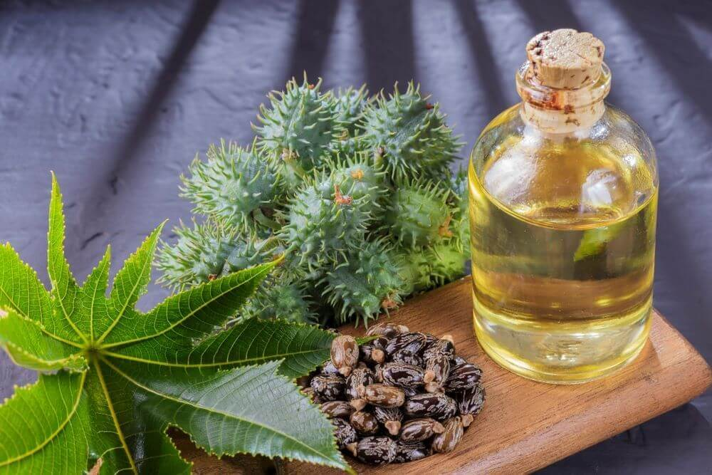 Amazing Castor Oil Benefits for Hair | Skin | Health