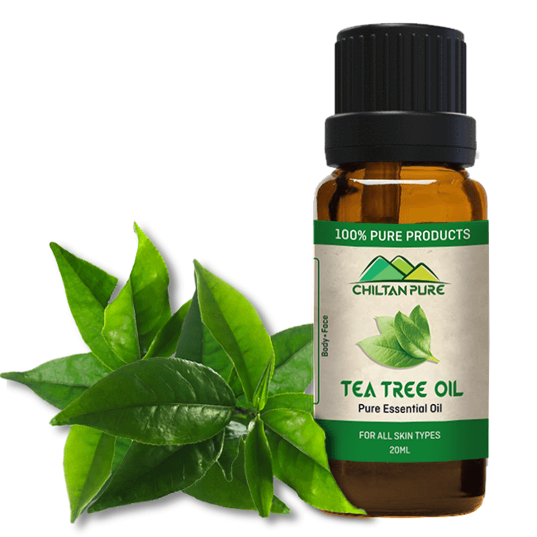 Tea Tree Essential Oil [ٹی ٹری]