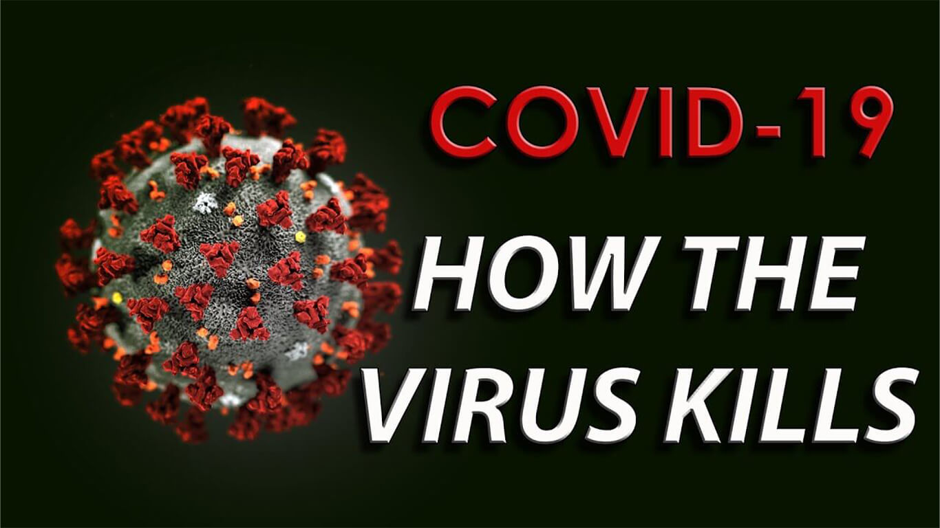It's Not The Virus that Kills You, It's Your Immune System
