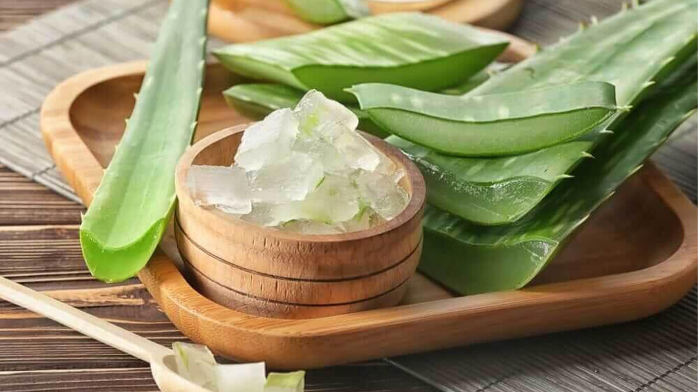 Aloe Vera Benefits: For Skin, Hair and Health